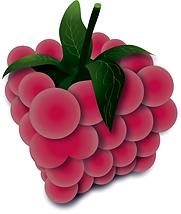 Ciasteczka dla Raspberry