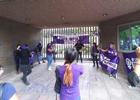 """Colectivos feministas solicitaron sea aprobada la """"Ley Olimpia Nacional"""""""