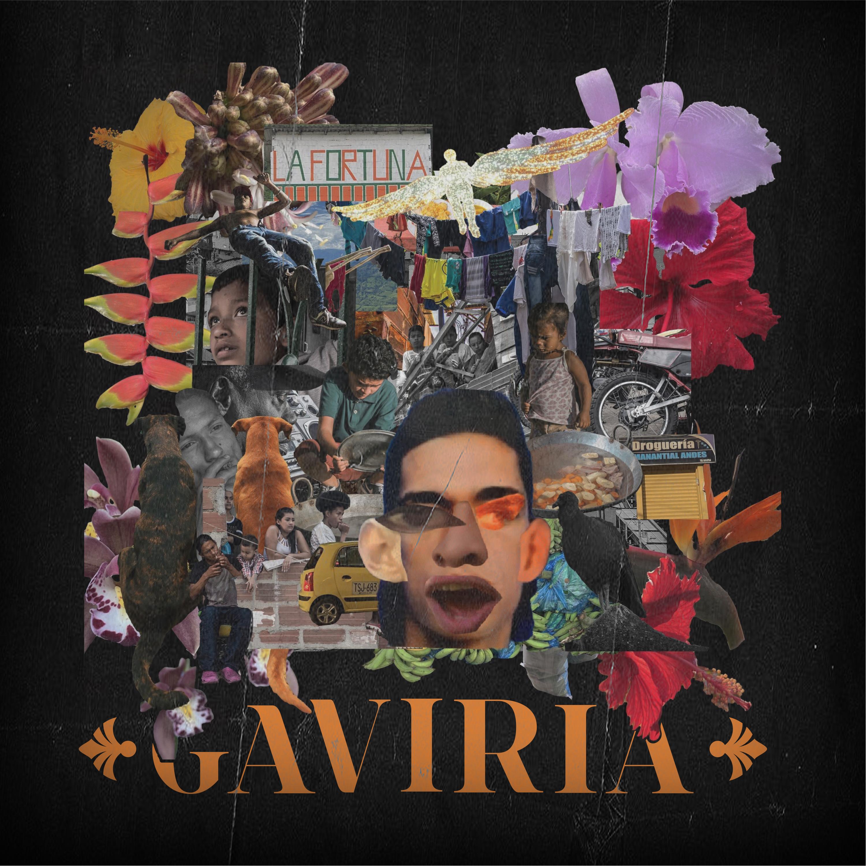 Primo Profit, RLX - GAVIRIA LP