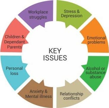 key issues.jpg