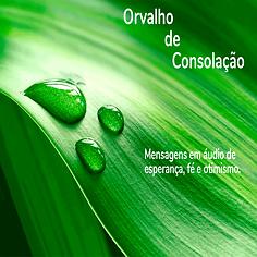 Orvalho-de-consolação.png