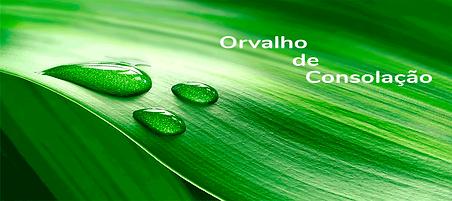 orvalho_capa_pág.png