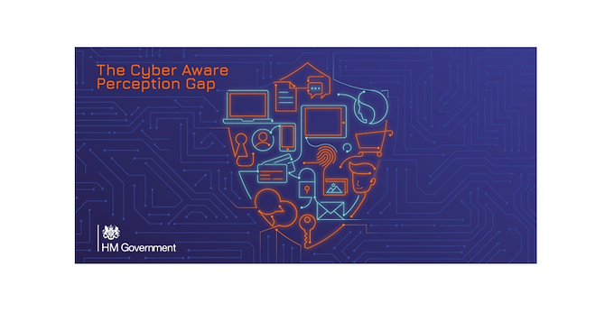 The Cyber Aware Perception Gap Report