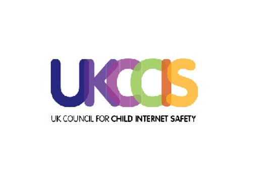 Children's online activities, risks and safety, a literature review by the UKCCIS Evidence Group