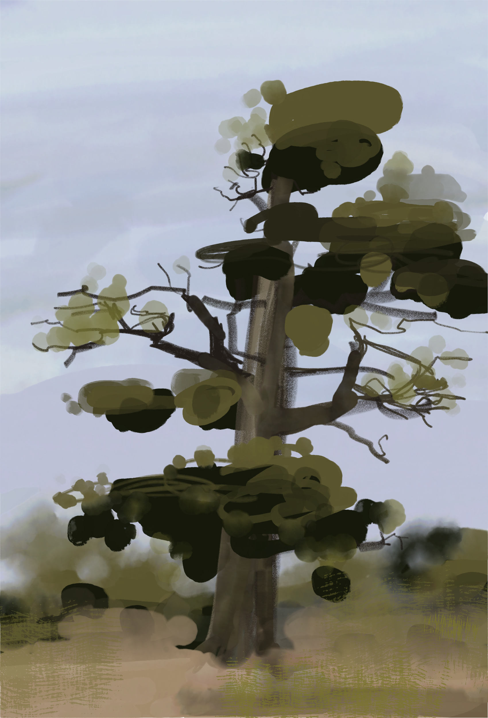Quick tree study