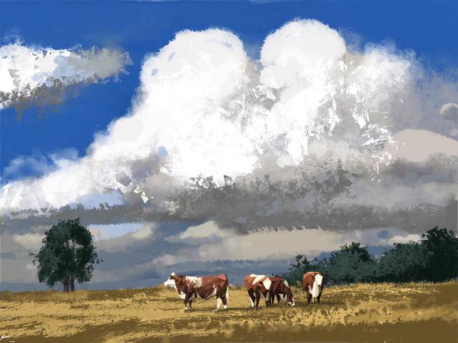Bill Keob's Cows
