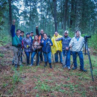 Bosque de las Luciérnagas Garciaferro