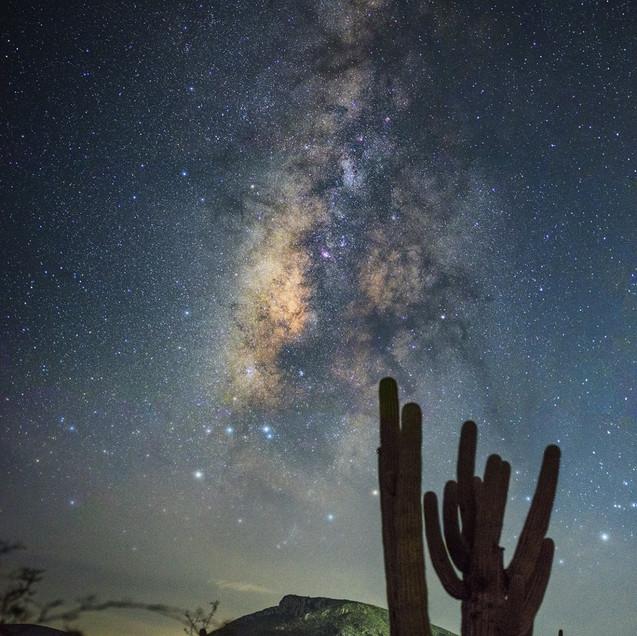 Vía Láctea Reserva de la Biósfera Garciaferro