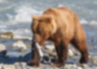 Taller Alaska Garciaferro