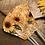 Thumbnail: Suntastic Sunflower