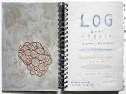 LOG.01.jpg