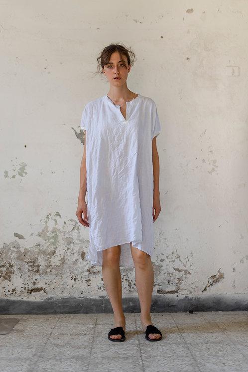 21168 - Dress Renza