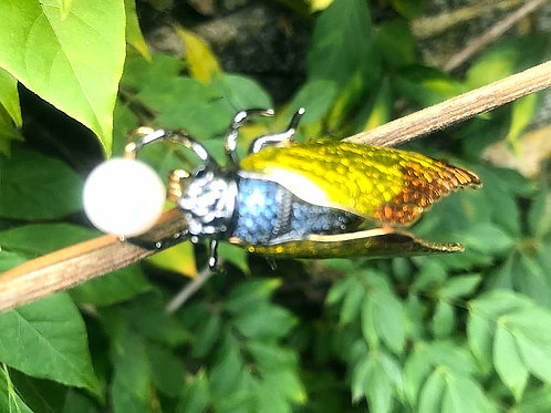 Insect Brooch with Cultured Pearl