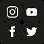 Social media portfolio.png