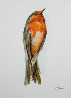 Bird study no. 1