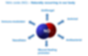 nitric-oxide.png