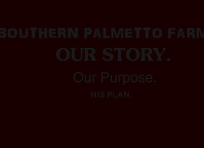 Take 5 minutes to listen to the family of Southern Palmetto Farms about the how and why Southern Palmetto Farms exists!