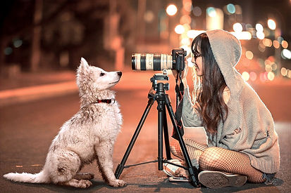 puppy-3688871_1280_edited.jpg