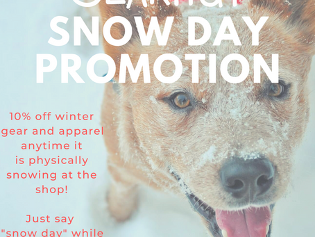 Snow Day Promotion