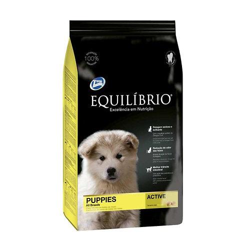 Equilibrio Puppies All Breeds - Cachorros - Todas las razas 2k