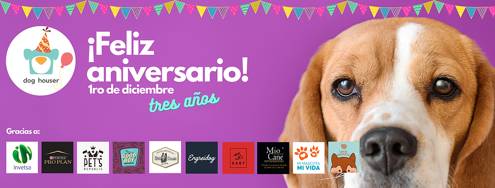 dog houser aniversario.png