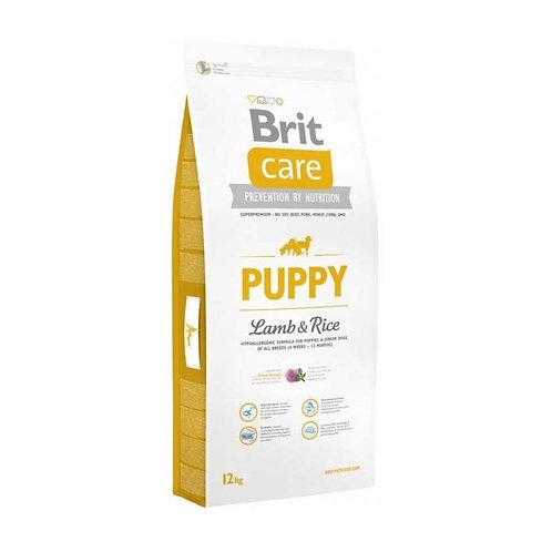 Brit Care Puppy Lamb & Rice - Cachorro - Cordero y arroz 12k