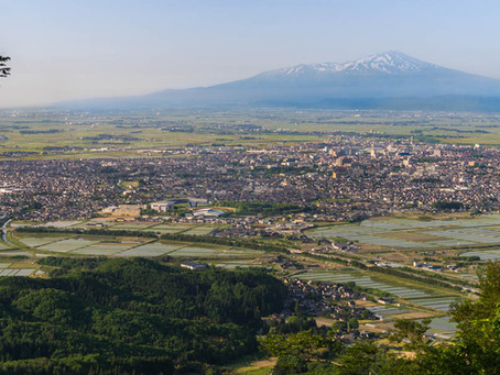 The Impact of COVID-19 on the Japanese Countryside