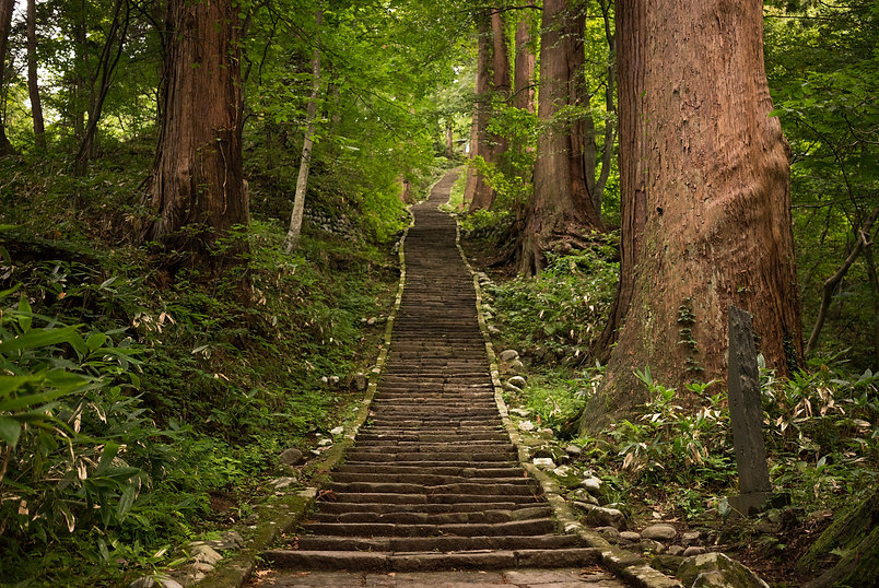 Stone staircase Mt. Haguro Shugendo Yamabushi Dewa Sanzan