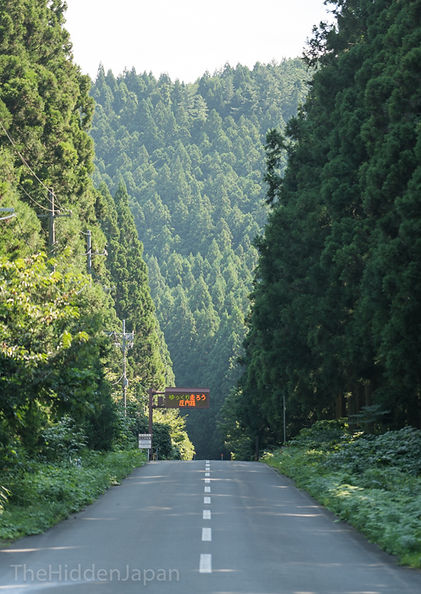 Driving in the forests outside Sakata City.