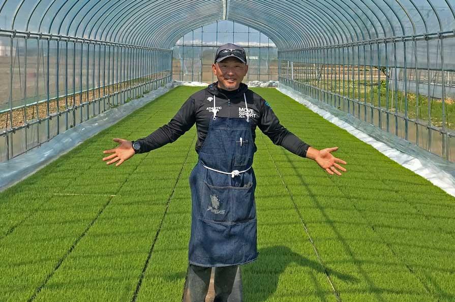 Rice farmer in Yamagata Prefecture