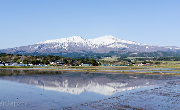 The snowy caped mt. chokai during the spring.