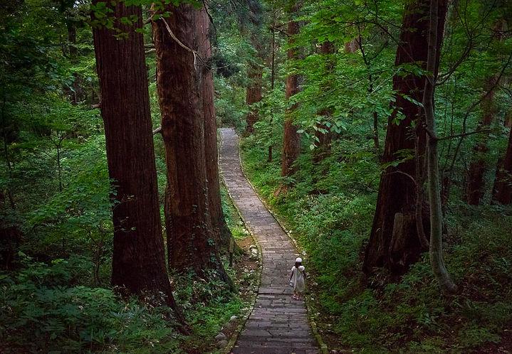 Stone stairway up Mt. Haguro Shugendo Yamabushi Dewa Sanzan