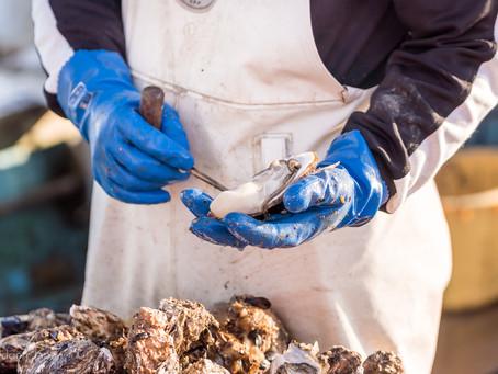 The Miyagi Oyster Project