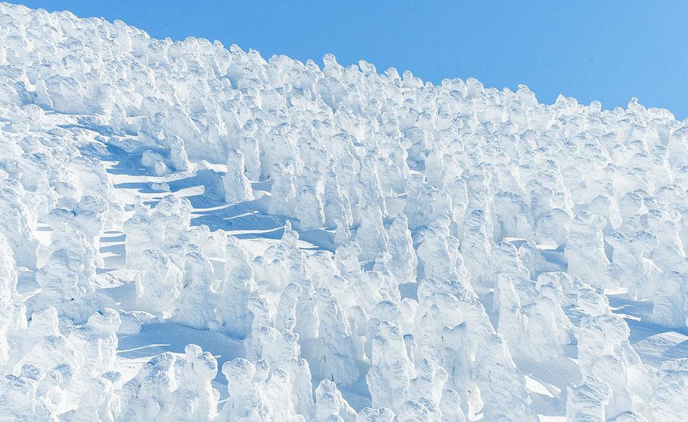 Zao Snow Monsters-1-7.jpg