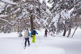 Skii Hiking on Mt. Zao