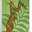 Thumbnail: Plant Animal Praying Mantis