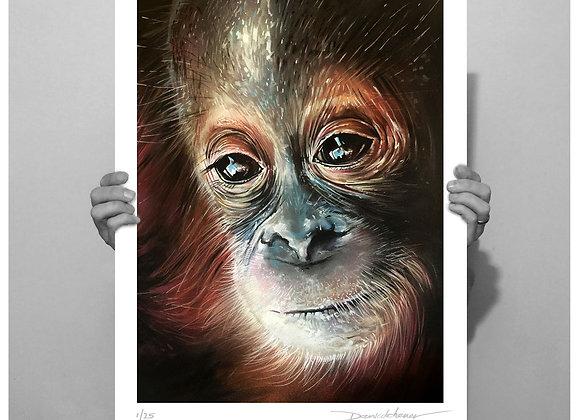 Limited Edition 'Udin' Orangutan Prints