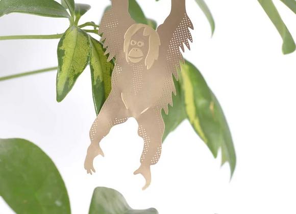Plant Animal Orangutan