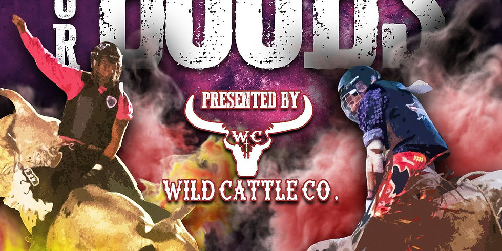 2nd Annual Bull Riding for Boobs