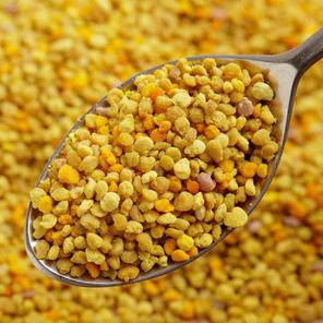 Bee Pollen ONE 10 lb. bag $100