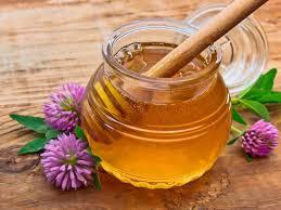 Clover Honey 1 GALLON $50,  1-60 lb. BUCKET $220