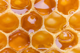 honey comb.jpg
