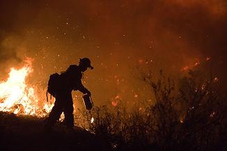 FEMA_-_33311_-_Fire_crew_member_fighting