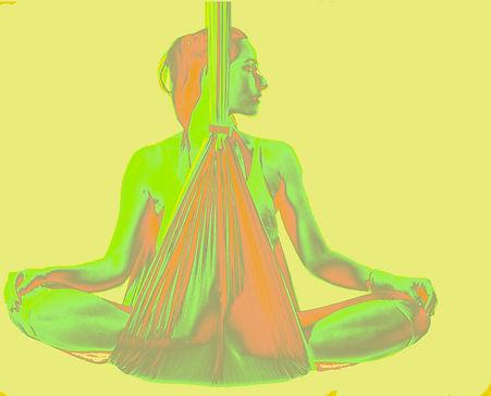 Yoga TRAPEZE PIC.jpg