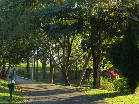 Parque São Lourenço: belas casas e árvores frutíferas na entrada de Indaiatuba