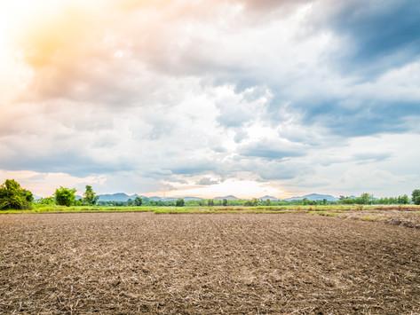 5 dicas importantes na hora de comprar um terreno