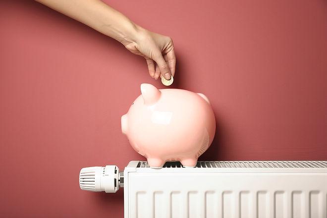 Energy-Saving-Piggy-Bank-9239fbe50d6266d12ccb7ba2caa95ae1b2efea792da62bdcddeac8ebdabf0b4a_edited.jpg