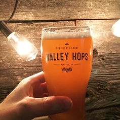 Valley-Hops-home-brew.jpg