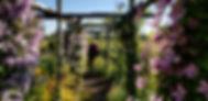 Courtyard Gardens.jpg