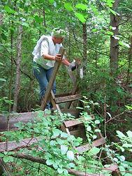 Ganaraska Hiking Trail_036.jpg